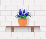 Houseplant Design Flat Concept Royalty Free Stock Photo
