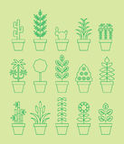 Houseplant icons. A series of illustrations with various houseplants, cacti flowers and grasses Royalty Free Stock Image