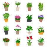 Houseplant Icons Set Stock Image
