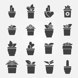 Houseplant icons set Stock Photography