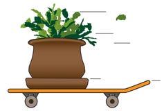 Houseplant on a skateboard stock illustration