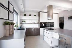 Houseplants in der exklusiven Küche lizenzfreies stockfoto