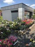 Houseplants en van tuininstallaties openluchtverkoper stock foto