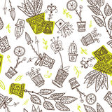 Houseplants in flowerpots seamless pattern Royalty Free Stock Images