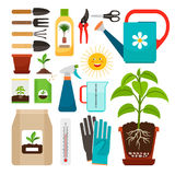 Houseplants and indoor gardening icons. Care of houseplants and indoor gardening icons. Fertilization and watering, flowerpot with soil and sunlight, seedling Royalty Free Stock Photography