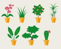 Houseplants lisos do estilo Ilustração Stock