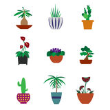 Houseplants in pots. Set of houseplants in pots royalty free illustration