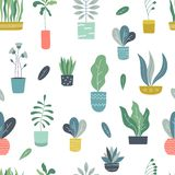 Houseplants seamless pattern. Abstract geometric indoor flowerpots with garden plants and succulents. Vector plants royalty free illustration
