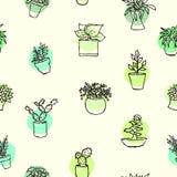 Houseplants som drar bakgrund Skissa av hem- växter akvareller för drawhandpapper royaltyfri illustrationer