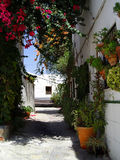 Houses with flowers in Salobrena, Spain Royalty Free Stock Photography