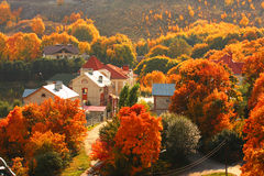 Houses. Among the autumnal trees. Sun weather Royalty Free Stock Photo