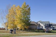 Houses in Alberta, Canada. Scene of an housing estate in Alberta, Canada stock images