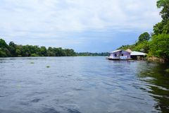 Houses along Amazonas river. Brazilian panorama. Houses along the Amazonas river. Brazilian wetland region. Navigable lagoon. South America landmark royalty free stock image