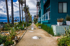 Houses along the boardwalk in Venice Beach  Stock Images