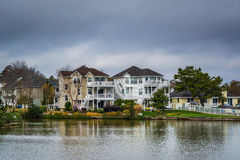 Houses along the shore of Lake Holly, in Virginia Beach, Virgini Royalty Free Stock Photos