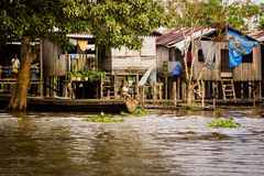 Houses at Amazon River Jungle Royalty Free Stock Photos