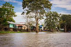 Houses at Amazon River Jungle Stock Images