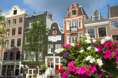 Houses in Amsterdam with flowers in the foreground Royalty Free Stock Images