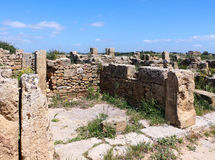 Houses of the ancient Greek colony of selinunte Stock Photography