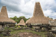 Typical houses with tall roofs, Kodi, Sumba Island, Nusa Tenggara. The houses in the background have traditional very tall roofs and characteristic straw roofs stock images