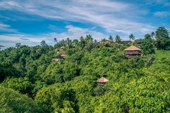 Houses in a Balinese jungle in Ubud royalty free stock photography