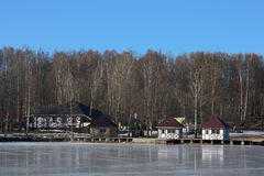 Houses among  birches on the icy lake Royalty Free Stock Image