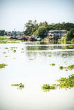 Houses and boats on the river in Thailand in Ayutthaya Stock Image