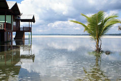 Houses in Cherating. Houses and palm tree in the water in Cherating, east Malaysia Stock Photo