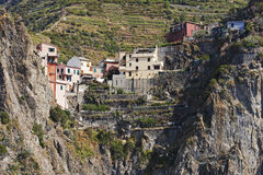 Houses on a cliff, Vernazza Stock Photo