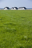 Houses in countryside. Row of white houses in countryside with lake in background Stock Images