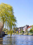 Houses at a course of a river. Willow and traditional houses with blue sky. Riverside in North Germany stock photography