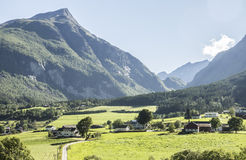 Houses, fields and mountains. Norwegian houses and fields with mountains in background Royalty Free Stock Images
