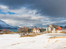 Houses and fjord in Harstad in winter - Troms, Norway Royalty Free Stock Photography