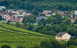 Houses between forest and vineyards. View over landscape with houses, forest and vineyards Stock Images