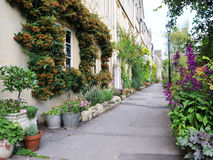 Houses and Gardens. Narrow Lane alongside Beautiful Old Terraced Houses and Gardens Stock Image