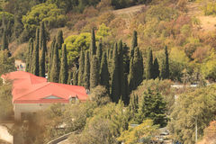 Houses in the green valley with cypresses. Royalty Free Stock Photography
