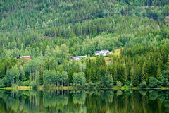Houses on a hill on the shore of the forest lake, Norway Stock Images