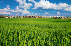 Houses on the horizon in the field Royalty Free Stock Photography
