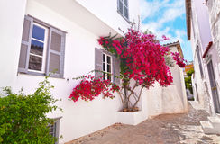 Houses at Hydra island Greece Royalty Free Stock Image