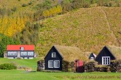 houses icelandic traditionellt royaltyfri bild