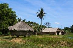 Houses in Iwahig prison Penal farm, Palawan Royalty Free Stock Photos