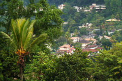 Houses in Kandy Royalty Free Stock Photos
