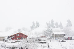 Houses in La Arboleda with snowstorm royalty free stock photography