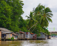 Houses of local people staying along river Royalty Free Stock Image