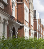 Houses in London - the streets/the bushes. Royalty Free Stock Photo