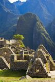 Houses of Machu Picchu Stock Images