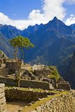Houses of Machu Picchu Stock Photo