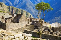 Houses of Machu Picchu Royalty Free Stock Photography