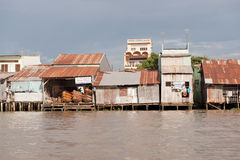 Houses on the Meekong Delta Vietnam Stock Photo
