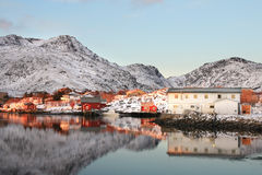 Houses mirroring in Ballstad's fjord royalty free stock photography